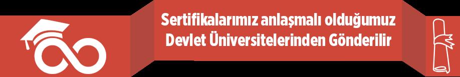 Devlet Üniversitesi Onaylı Sertifika