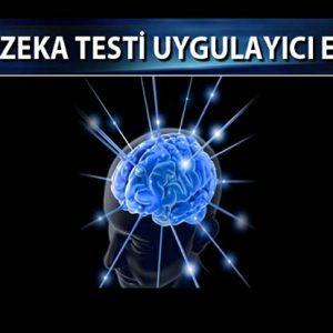 Gaziantep Eğitim Sertifika TONI-4 Zeka Testi Uygulayıcı Eğitimi