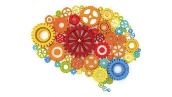 Gaziantep Eğitim Sertifika Dikkat ve Algı Testleri Uzaktan Eğitim
