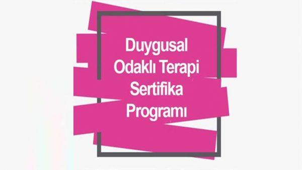 Gaziantep Eğitim Sertifika Duygu Odaklı Terapi Eğitimi Sertifika Programı